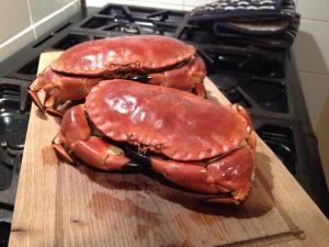 monster crabs